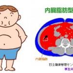 倹約遺伝子は肥満や糖尿病になりやすい