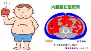 内臓脂肪肥満では血糖値が上がり糖尿病になりやすい