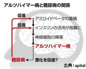 糖尿病になったら脳の糖尿病のアルツハイマー病に注意してください