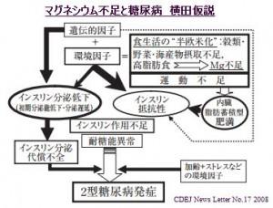 マグネシウムと横田仮説