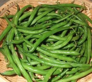 インゲン豆は糖尿病に良い