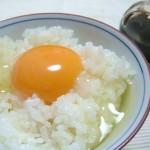 卵は糖尿病を予防するのか