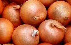 ケルセチンを含む玉ねぎは糖尿病予防に良い