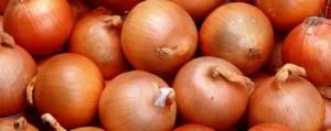 玉ねぎのケルセチンの健康効能を調べる