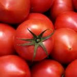 夜トマトはダイエットや糖尿病にいい