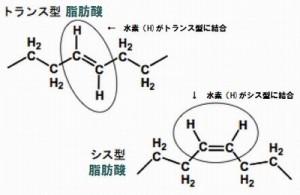 トランス脂肪酸とシス型脂肪酸の違い