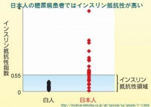 日本人の糖尿病患者ではインスリン抵抗性が高い