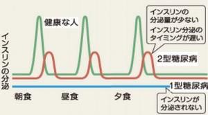 インスリンの分泌パターン