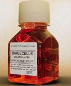 膵臓の再生医療により糖尿病治療が進歩する