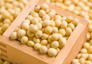 大豆は糖尿病や肥満に良い食材です