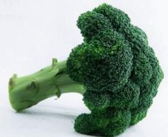 糖尿病ならブロッコリーが良い食べ物です