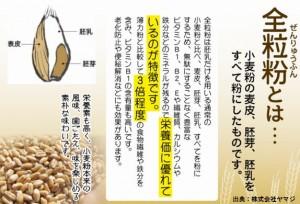 全粒粉は糖尿病だけでなく癌にも良い
