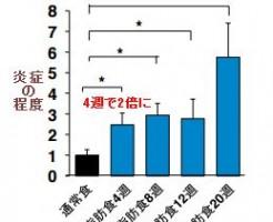 インスリン抵抗性が糖尿病の原因と慶応大学がプレスリリース
