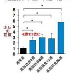 インスリン抵抗性が糖尿病の原因|慶応大学