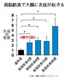 腸の炎症によるインスリン抵抗性が糖尿病の原因と慶応大学が発表