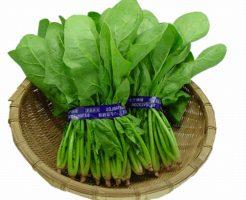 緑葉野菜の不足は糖尿病などのメタボの原因