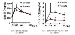 ミニトマトのリコピンには食後高血糖を下げる作用があるのか?