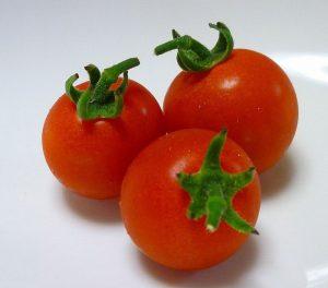 食後高血糖が下げるにはミニトマト3個を食べれば良い