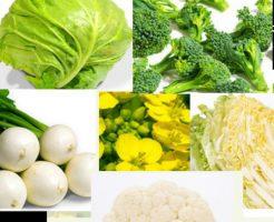糖尿病に良い野菜はアブラナ科