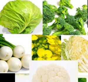糖尿病が心配ならアブラナ科の野菜を食べてください
