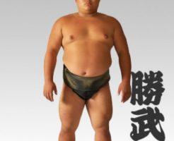 糖尿病だった相撲力士の勝武士は新型コロナウイルス感染で死亡